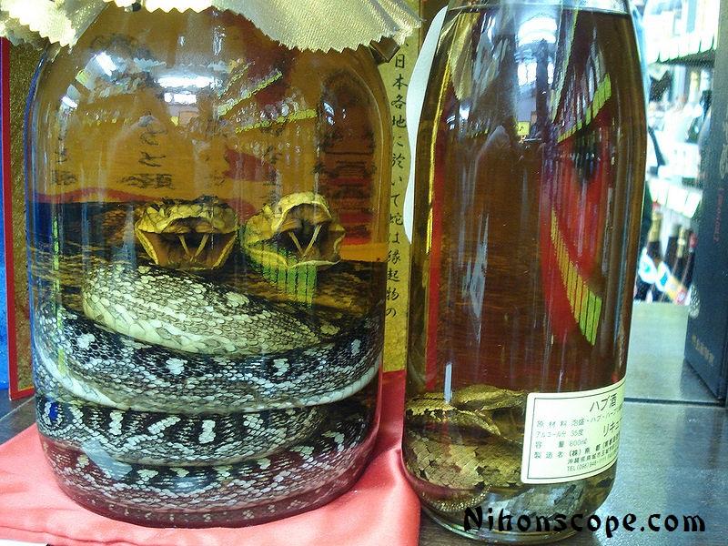 Drinking Snake Venom Benefits