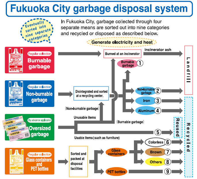 A helpful Gumi guide for fukuoka